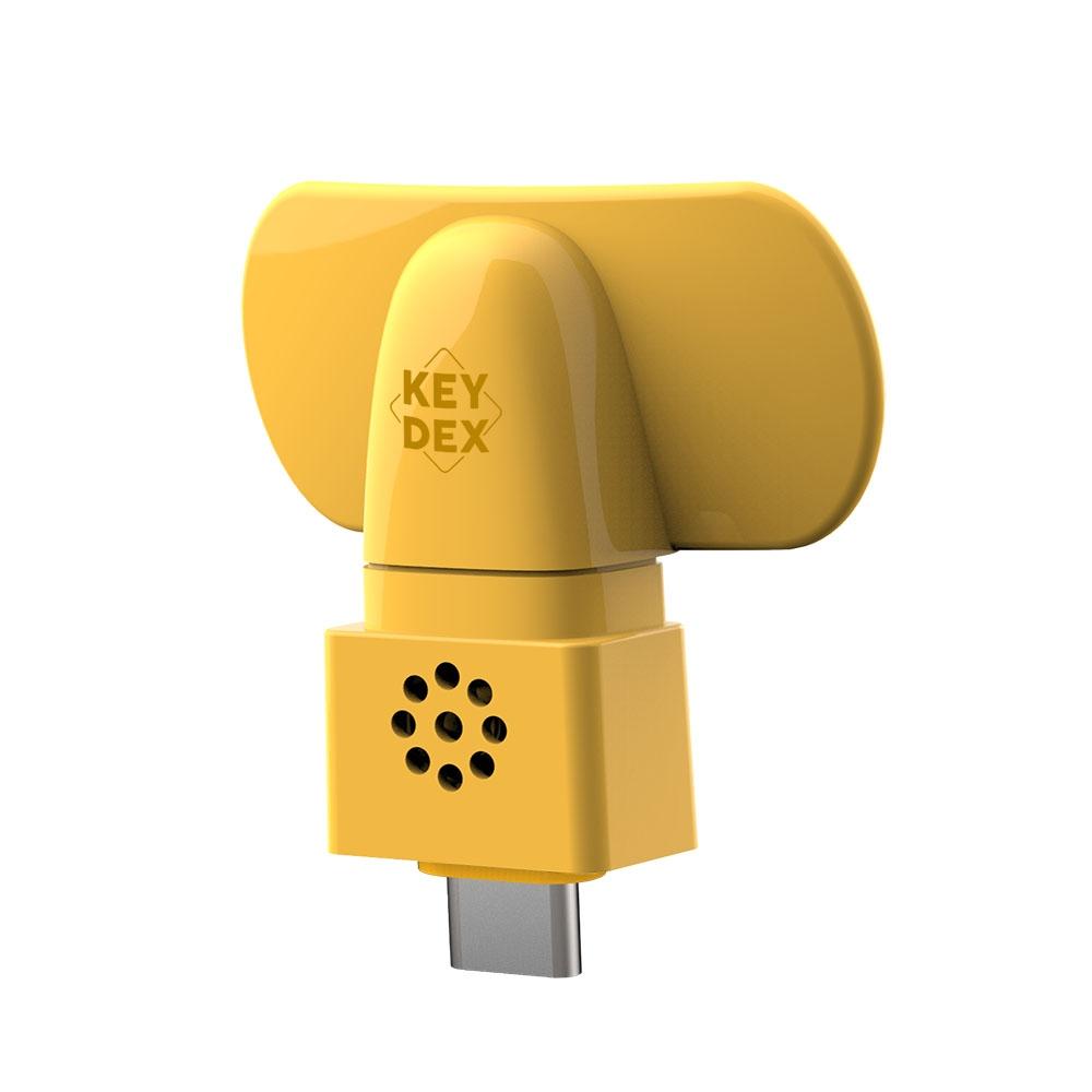KEYDEX MIC (Type-C)
